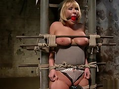 Pawg Mellanie Monroe anal toy on high hogtie